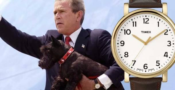 bush timex